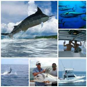 Costa rica fishing vacation packages villa thoga for Costa rica fishing vacations