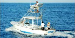 deep sea fishing in tamarindo at it's best