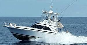 best quepos sailfishing charters with villa thoga tours