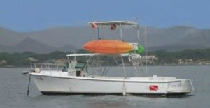 book here sport fishing tamarindo costa rica tours