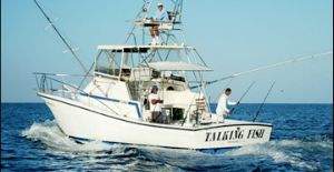 on this website you really get the best fishing charters in tamarindo costa rica. villa thoga tours will help you