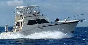 you get the best rates for fishing charters los suenos