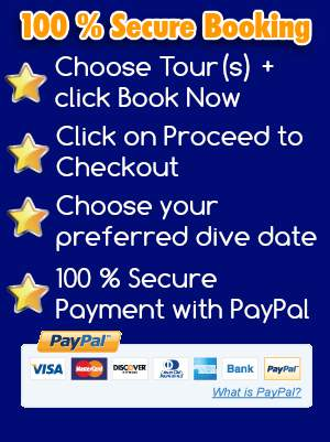 pay your scuba diving playa flamingo costa rica trip 100 % secure