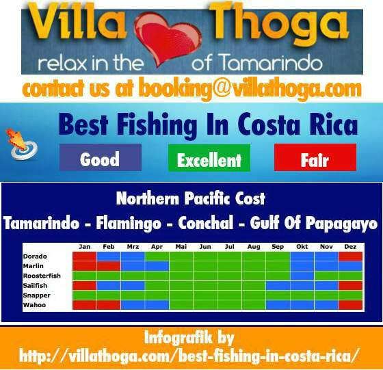 tamarindo fishing seasons calendar